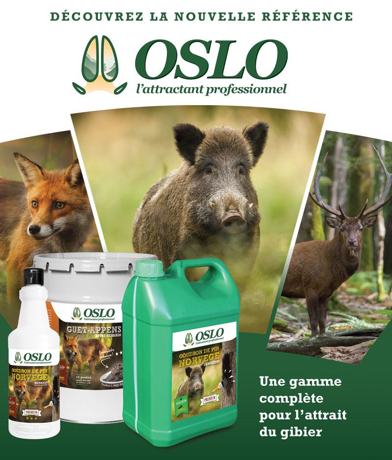 publicité Oslo